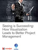Whitepaper Projectmanagement: Seeing is Succeeding